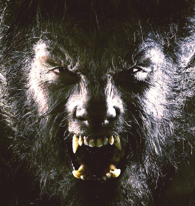 The Wolfman won best makeup at the Academy Awards