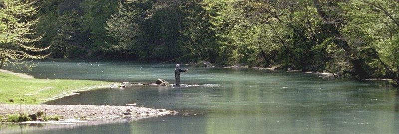 Fly casting salmon trout fishing and film location for Missouri trout fishing