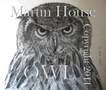 An original Owl pencil drawing by Martin House