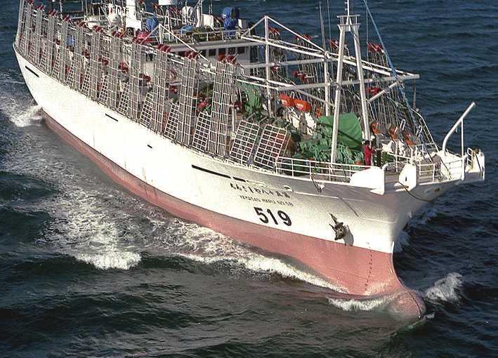 Fishing boat trawler marine insurance for Japanese fishing boat