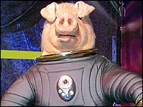 A Space Pig