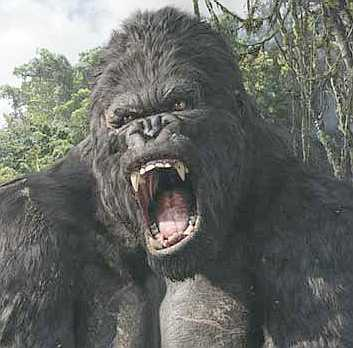 [IMG]http://www.solarnavigator.net/films_movies_actors/actors_films_images/king_kong_movie_roar.jpg[/IMG]