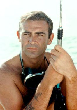 http://www.solarnavigator.net/films_movies_actors/actors_films_images/sean_connery_dr_no_james_bond.jpg