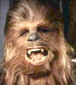 twins - separated at birth? Star_wars_chewbacca