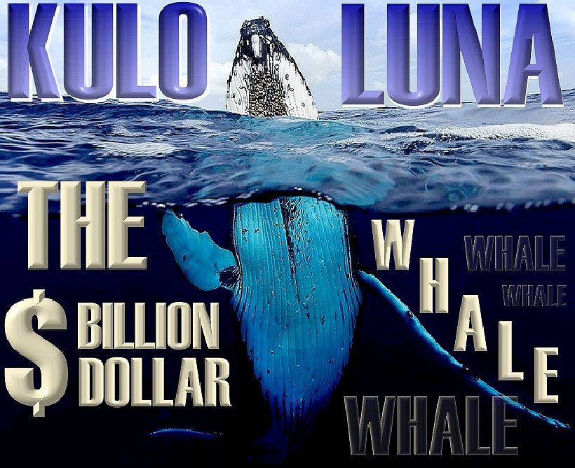 Kulo Luna - a film written to make a difference to the way the public perceive the oceans