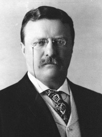 Theodore Roosevelt portrait