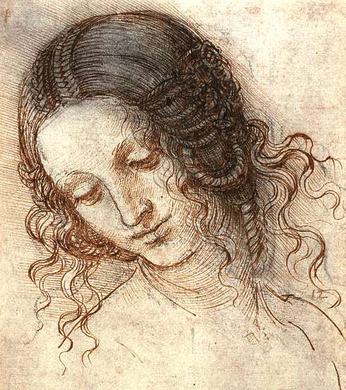 "renaissance man leonardo da vinci essay Free leonardo da vinci papers, essays the exciting time of new ideas in the arts and sciences known as the renaissance leonardo, a man with ""boundless."