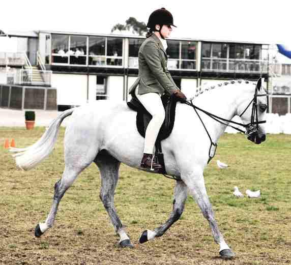 Horse_riding_Gymkhana_coca_cola_arena_melbourne_show_2005.jpg