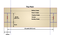 Cricket+pitch+size+diagram