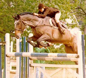 external image equestrian_show_jumping_horse_amtrak.jpg