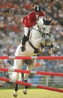 external image horse_jumping_equestrian_show_cento.jpg